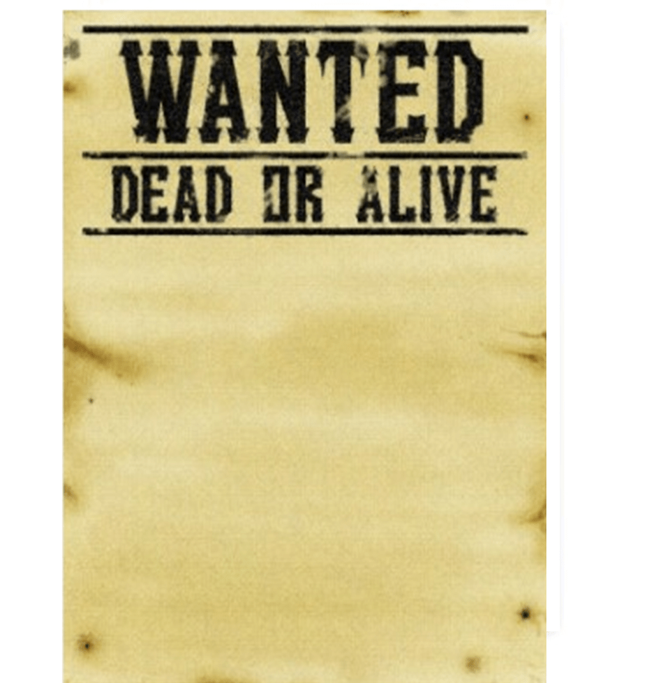 7 Wanted Poster Templates Excel PDF Formats – Wanted Posters Templates