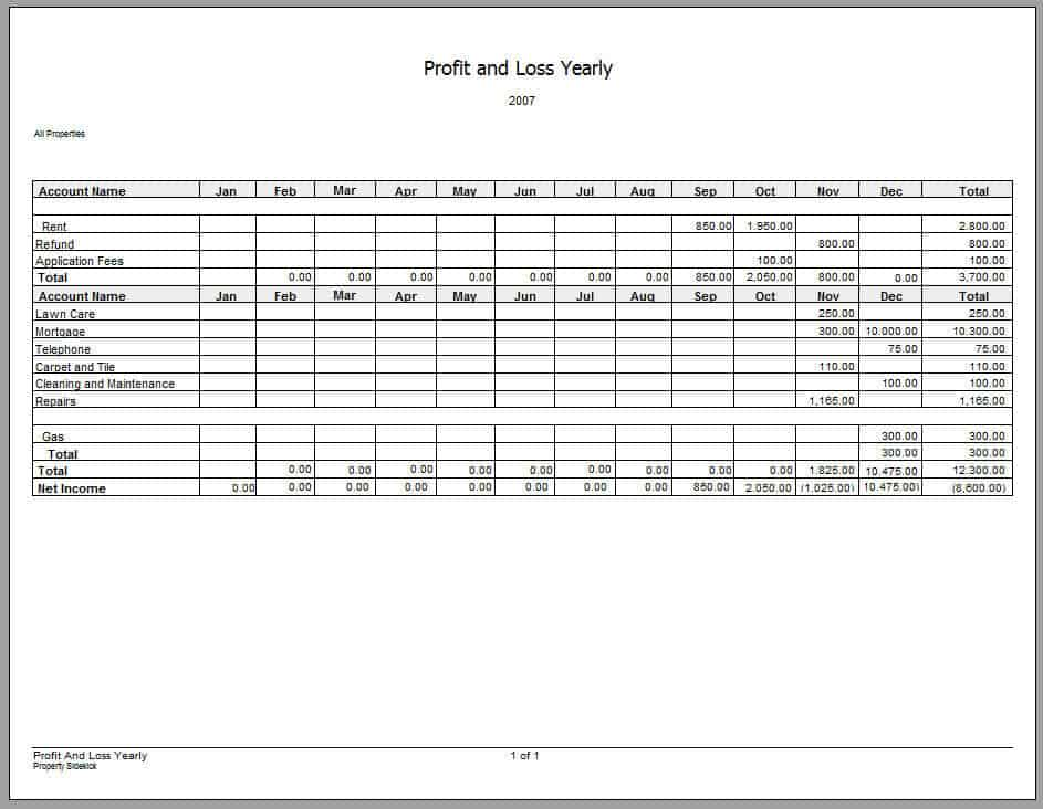 Profit And Loss Statement Profit And Loss Statement Form For Small