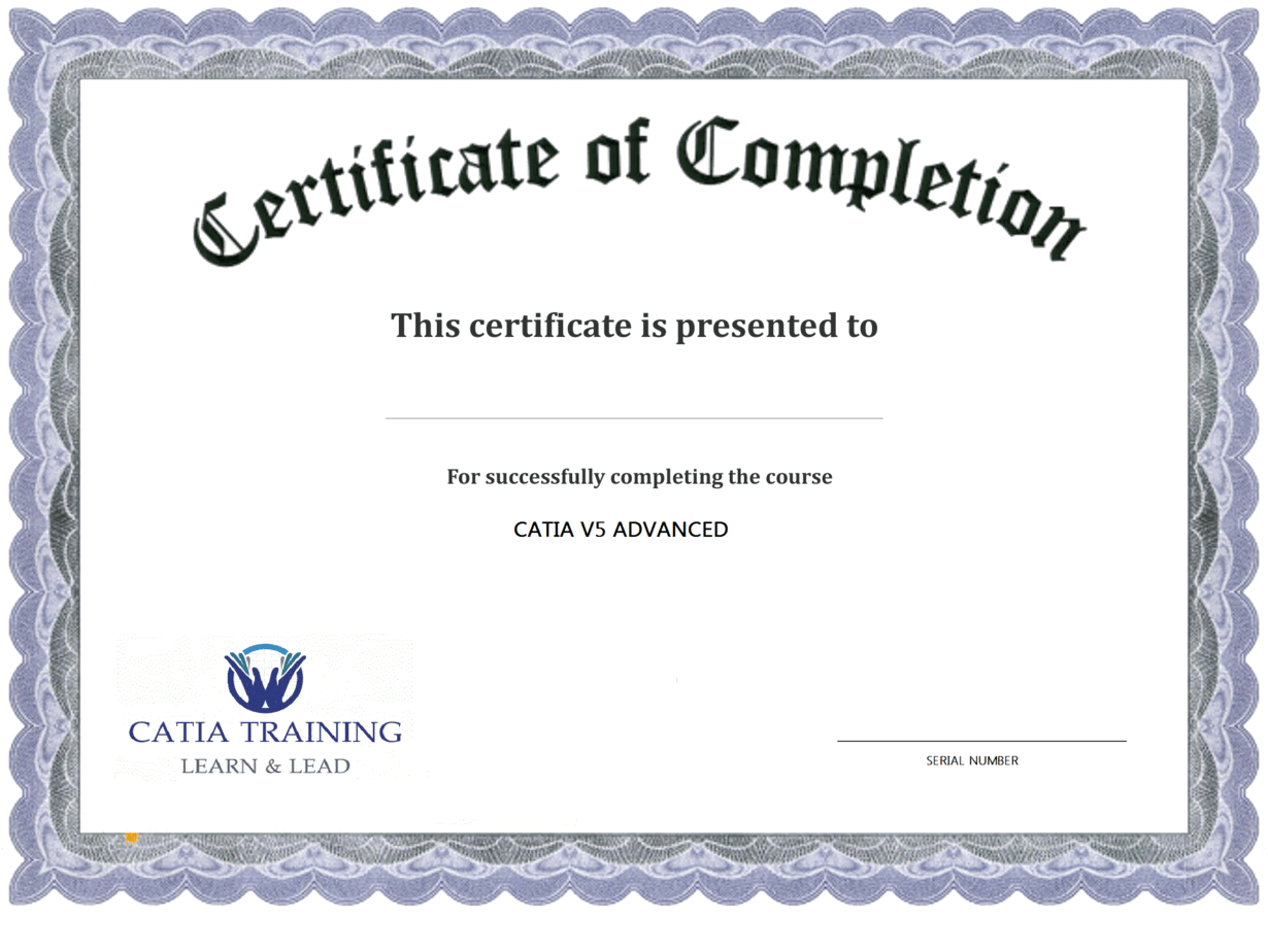 Template For Certificate Of Completion certified strength and – Training Certificates Templates Free Download