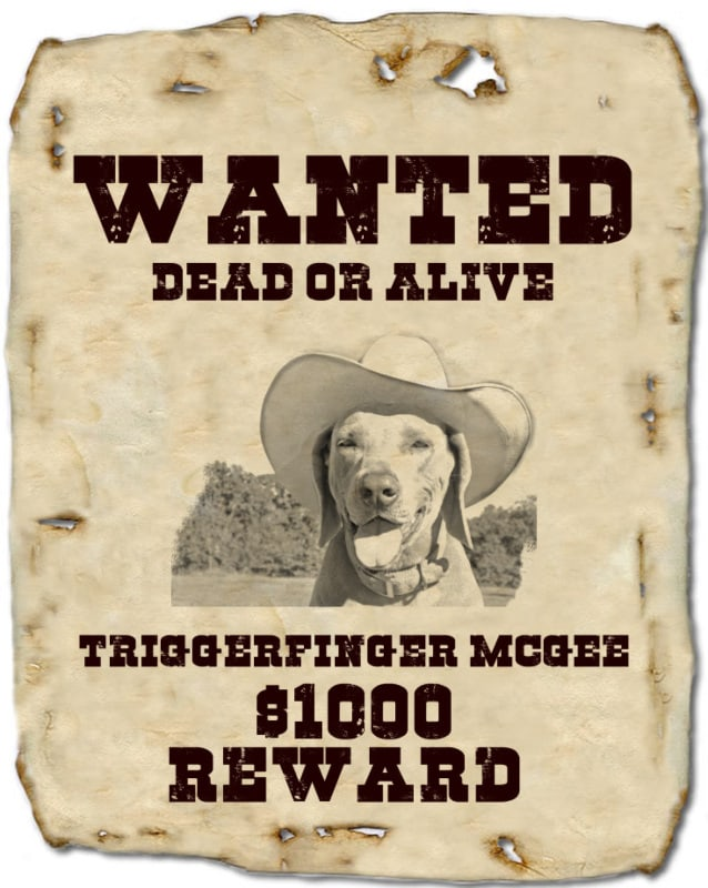 wanted poster template 22