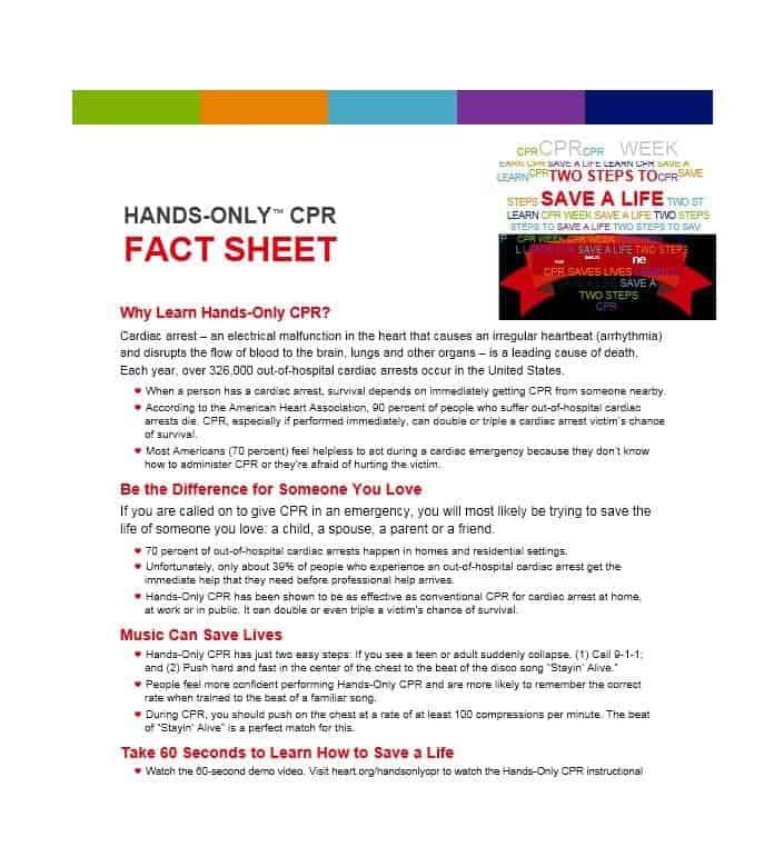 10 fact sheet templates excel pdf formats